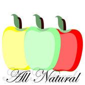 Healthy apples — Stock Vector