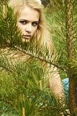 Beautiful blond woman behind a pine — Stock Photo