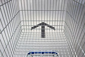 Shopping Cart Following The Way — Stock Photo
