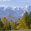 Very beautiful autumn Altay mountains — Stock Photo #19389665