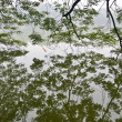 Hoan Kiem Lake, Hanoi, Vietnam from underneath a tree - Stock Photo