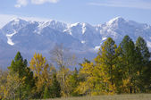 Very beautiful autumn Altay mountains — Stock Photo