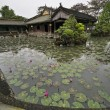 Stock Photo: Pond with lotus in Emperors town Hue. Vietnam.
