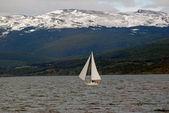 Jachta v kanálu beagle, poblíž ushuaia. — Stock fotografie