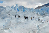 Trekking on Perito Moreno glacier, Argentina. — Stock Photo