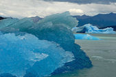 Many icebergs in lake Argentino near Upsala glacier. — Stock Photo
