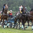 Stock Photo: Horse race. Three horses in harness