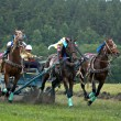Stock Photo: Horse race. Three horses in harness.