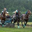 Horse race. Three horses in harness. — Stock Photo