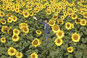 Field of sunflowers with happy woman. — Stock Photo