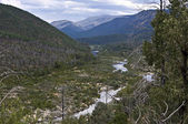 Landscape with river Snowy in Mt Kosciuszko national park, Austr — Stock Photo