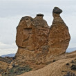 Amazing geological features in Dervent valley, Cappadocia, Turke — Stock Photo #21686845