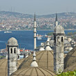 Turkish view on Bosporus. Point of interest in Turkey — Stock Photo #21687101