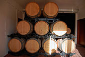 Port Wine in barrels, Portugal. — Stock Photo