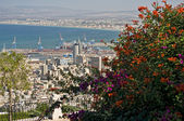 The Port city of Haifa. Israel. — Стоковое фото
