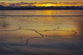 Landscape of winter ocean on Kamchatka in Russia.  — Stock Photo