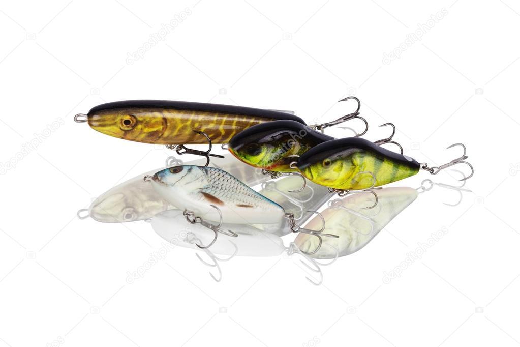рыбы приманки для хищных рыб
