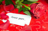 Red rose with a white card. — Stock Photo