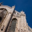 Milano cathedral — Stock fotografie #23965965