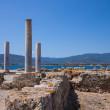 Nora ruins on sardegna — Stock Photo