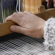 Stock Photo: Handloom weaver