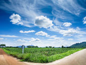 Rural crossroad green grass and blue sky — Stock Photo