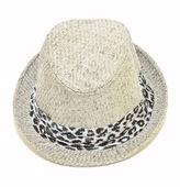 灰色的帽子 — 图库照片