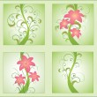 Set of floral illustration — Stock Vector