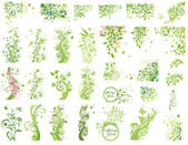 Set of green floral design elements — Stock Vector