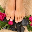 Pedicure — Stock Photo #22953322