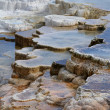 Yellowstone Steps — Stock Photo