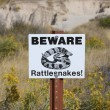 Stock Photo: Beware rattlesnakes