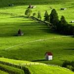 Amazing landscape in North of Romania — Stock Photo #19375627