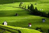 Incroyable paysage au nord de la roumanie — Photo