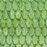 Green wooden shingles — Stock Photo