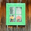 Stockfoto: Flowers seen through wooden window of old house