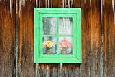Flowers seen through a wooden window of an old house — Stockfoto