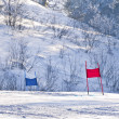 Ski gates with red and blue flags — Foto de Stock