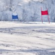 Stock Photo: Ski gates with red and blue flags