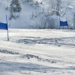 Ski gates with red and blue flags — Stock fotografie