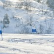 Ski gates with red and blue flags — Stock Photo #21899081