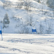 Ski gates with red and blue flags — Stockfoto #21899081