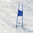ストック写真: Ski gates with blue flags