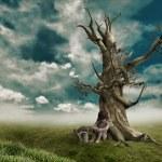 Child dead tree near — Stock Photo