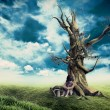 Stockfoto: Child dead tree near