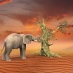 Elephant retro photo effect — Stock Photo #19525511