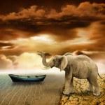 Elephant retro photo effect — Stock Photo #19526057