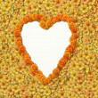 Heart shape background with flowers — Stock fotografie
