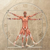 Vitruvian man — Photo
