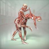 Anatomia człowieka — Zdjęcie stockowe